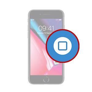 iPhone 8 Plus Home Button Replacement Dubai, My Celcare JLT,