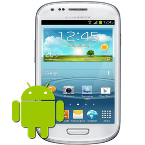 Samsung S3 Mini Software Faults