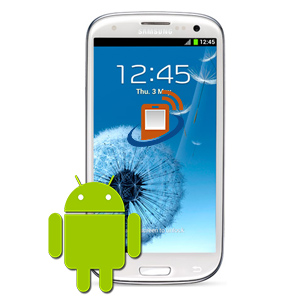 Samsung S3 Software Faults