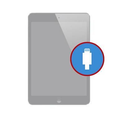 iPad Mini Dock Connector Replacement dubai, my celcare jlt,