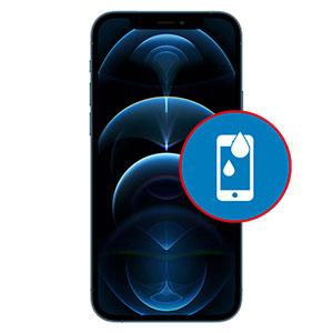 Phone 12 Pro Water Damage Repair Dubai
